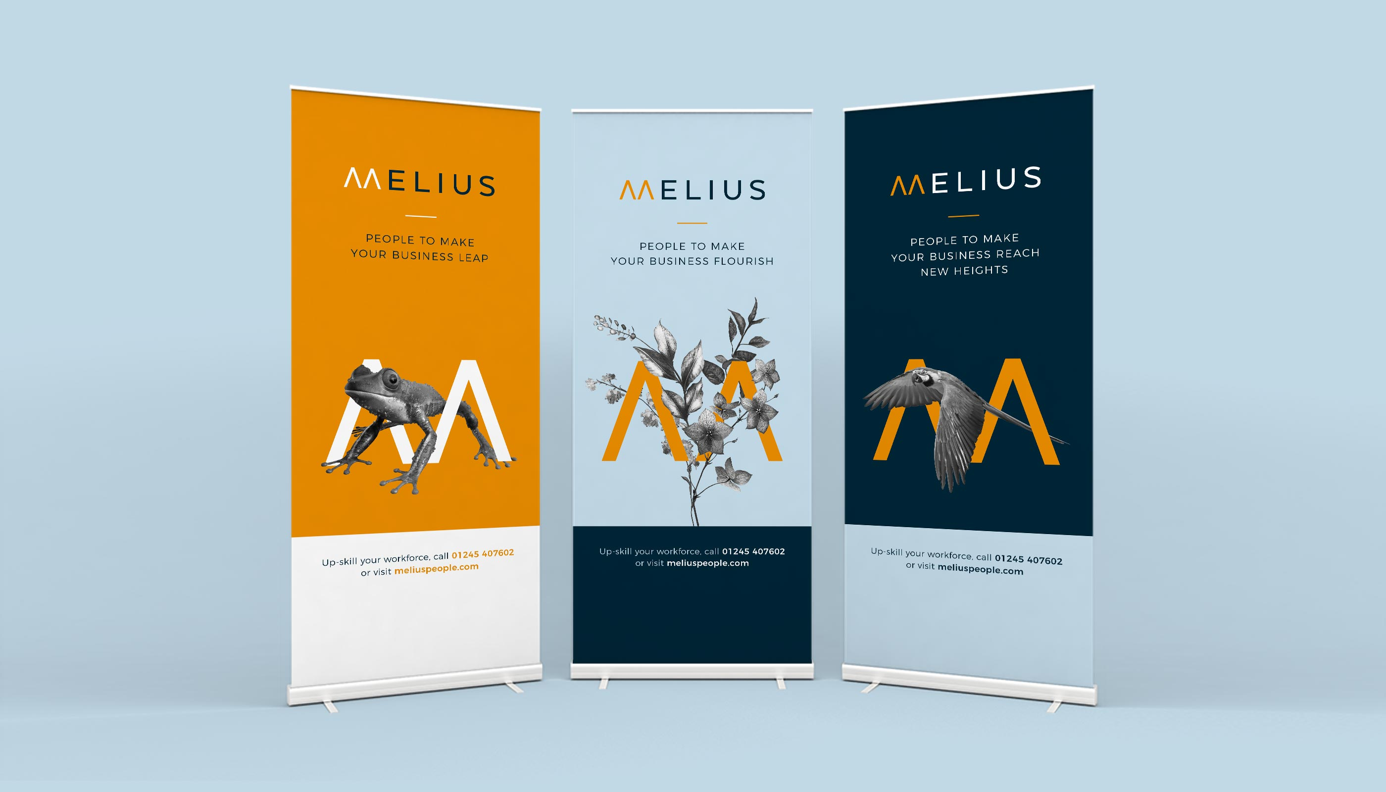 Roll up banner designs for Melius in Ipswich, Suffolk.